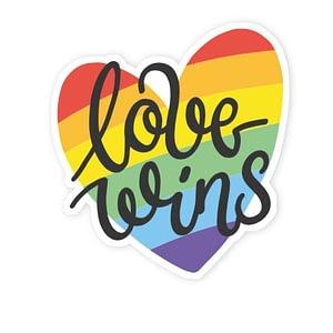 Love Wins Sticker | Vinyl Stickers